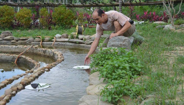 林文嶽打造「曲水流觴」茶席,讓賞蓮更添風雅。(周曉婷攝)