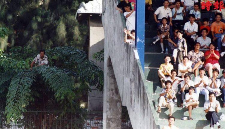 球迷看球賽的樂趣各有巧妙不同?攀上樹梢,找個特別包廂,看場免費球賽,雖然辛苦,但不用花錢買票,也是「爽」事一件。(本報資料照片)