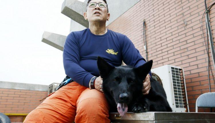 桃園市政府消防局特搜大隊第一搜救分隊小隊長童逸賢(左)談起朝夕相處的首隻搜救犬「快樂」(右),期盼能在快樂退役時,爭取領養牠回家。(劉宗龍攝)