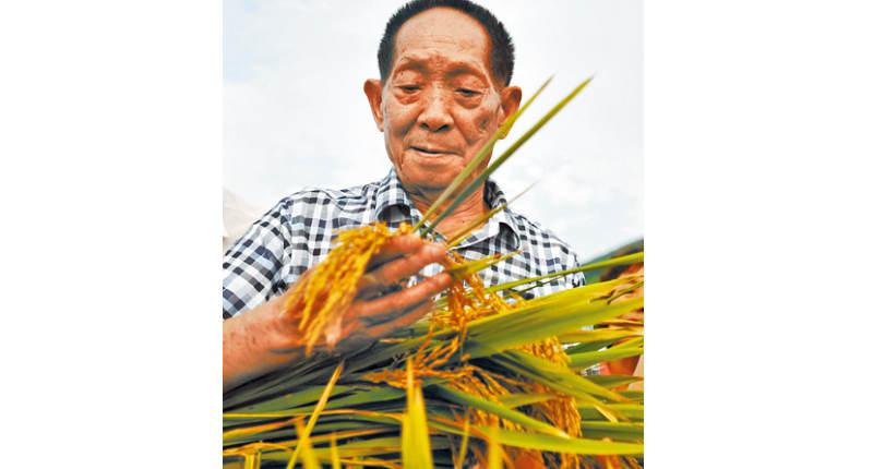 2021-05-23・旺報-綜合報導大陸雜交水稻之父袁隆平逝世